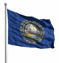 Newhampshire flag a