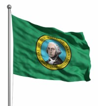washington flag a